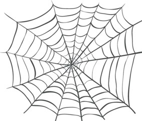 SpiderWeb DoctorB